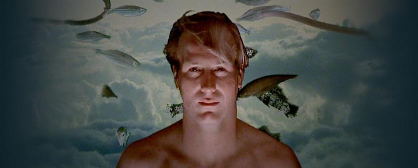 Psicologia dell'immersione, il perché di una scelta
