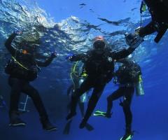 Inizia l'immersione