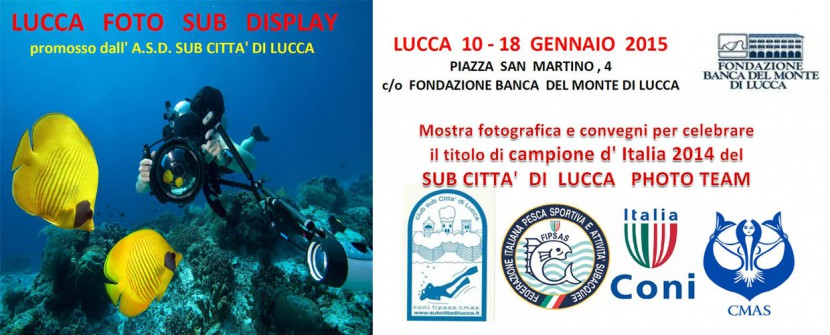 Lucca Foto Sub Display