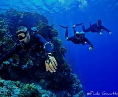 SideMount - Mar Rosso