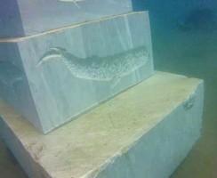 Sagome non solo di pesci intagliate nel marmo dei blocchi