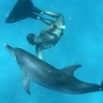Mike Maric delfini