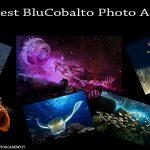 """Il """"4° Blu Cobalto contest"""" e il """"Premio Duilio Marcante 2018"""""""